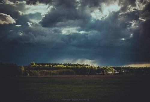 las landscape